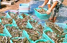 越南力争到2020年水产品出口总额达80亿至90亿美元