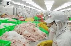 九龙江平原地区原料茶鱼价格猛涨