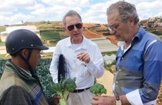 荷兰高级专家组织:荷兰专家愿赴越分享可持续发展经验