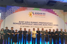 东盟联合磋商会在马尼拉举行 为第31届东盟峰会做准备