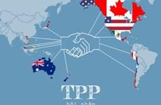 TPP的11个参加国将于下周在日本召开会议