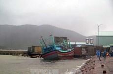 郑廷勇副总理要求抓紧搜寻归仁海域失踪人员