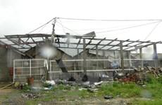 政府副总理郑廷勇到富安省和庆和省视察灾情并指导救灾工作