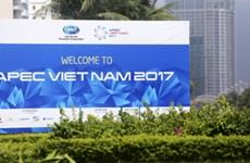 2017年APEC会议:展现越南的地位和实力