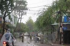 """韩国和美国为越南开展台风""""达维""""恢复重建工作提供援助"""