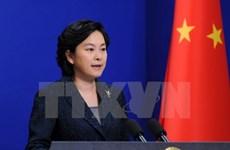 中国外交部发言人华春莹:中国将尽快向越南提供所需援助物资