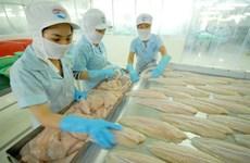 越南努力加大对欧盟查鱼出口力度