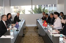 越南国会主席阮氏金银会见澳大利亚企业代表