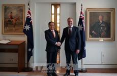 不断巩固与发展越澳关系 更好造福两国人民