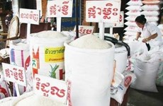 今年前11月柬埔寨大米出口量同比增长17%