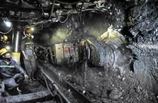 今年12月份TKV力争实现煤炭生产量达240万吨