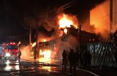 积极保护在中国台湾发生大火中受困的越南劳工
