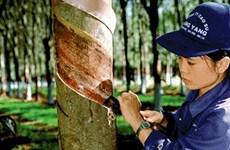 越南在老挝开展有效投资