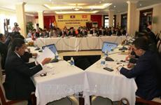 柬老越发展三角区副部长级会议在越南平福省拉开序幕