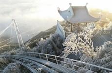 大雪覆盖番西邦峰  许多牲畜被冻死