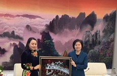越南妇女联合会代表团对中国进行工作访问