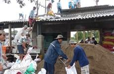 """越南各省市采取措施紧急应对第十六号台风""""天秤"""""""