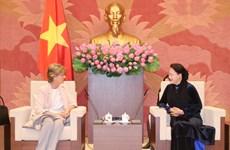越南国会主席阮氏金银会见西班牙新任驻越南大使