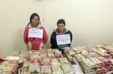 奠边省公安破获有史以来的最大毒品案 缴获489块海洛因