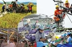 回顾2017年:越南经济画卷上的亮点