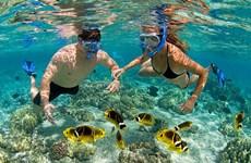 2018年富国岛县力争接待国际游客逾50万人次