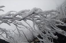 老街省高山地区出现严寒冰冻天气 近3万学生临时停课