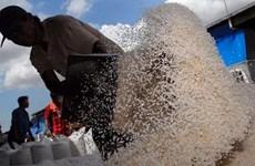 印度尼西亚将从越南进口大米
