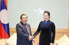 国会主席阮氏金银会见老挝国会副主席