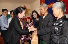 越南国会主席阮氏金银率团赴何静省调研