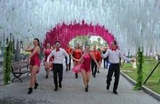 下龙市炫彩花色奇观节从今至2018年戊戌春节正月初五举行