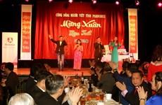 旅居海外越南人纷纷举行迎新春活动