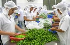 2018年1月越南蔬果出口额约达3.21亿美元