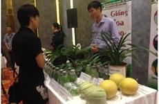 河内市分享有关高科技农业推广应用的经验