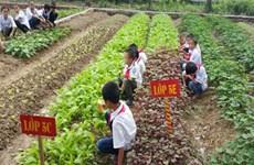 校园农场模式让学生吃得放心吃得开心