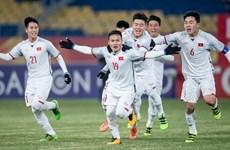 国际足联最新排名:越南国足队名列东南亚地区首位