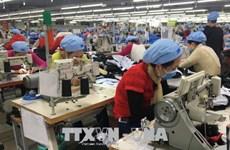 春节后胡志明市众多企业纷纷恢复生产