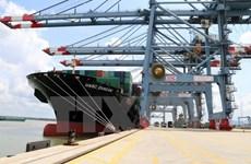 越南芹苴市新港-丐龟货物吞吐量5000吨