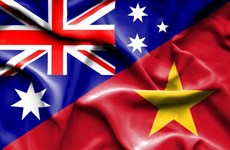 澳大利亚学者:澳越两国在许多问题上有共同的关切并持共同立场