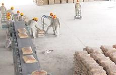 年初越南水泥出口呈暴涨态势