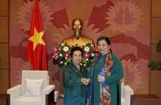 加强越老两国国会民族委员会的合作