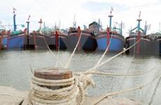 富安省采取紧急措施 克服遭欧盟IUU黄牌警告