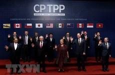 11国在智利正式签署《全面进展的跨太平洋伙伴关系协定》