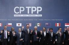 """《跨太平洋伙伴关系全面进展协定》:""""贸易进展""""是未来的选择"""