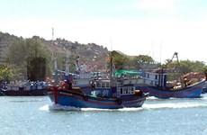 越南渔业协会反对中国单方面颁发海洋伏季休渔制度