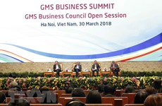 大湄公河次区域商务理事会扩大会议正式开幕