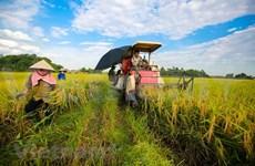 农业与农村发展部下决心实现农业GDP增长至少达3.0%