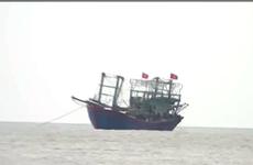 乂安省两艘渔船遇险