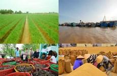 2018年第一季度越南朔庄省经济发展呈现出积极信号