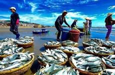 2018年越南水产捕捞量力争达330万吨