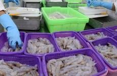 欧盟--越南虾类产品的最大出口市场
